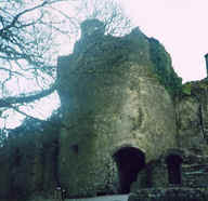 Photo: Ruined Tower of Monk Linda's Ancestral Castle, County Cork, Ireland.  Photo Copyright 1998 S.G.P.  All Rights Reserved.