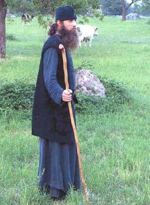 Photo: of an Orthodox monk and cows.