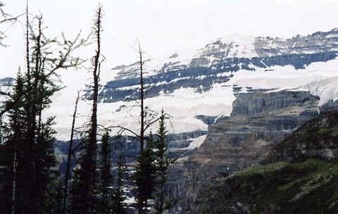 Photo: Canadian Rockies - Icefields Parkway, Alberta.  Photo Copyright 2006 S.G.P.  All Rights Reserved.