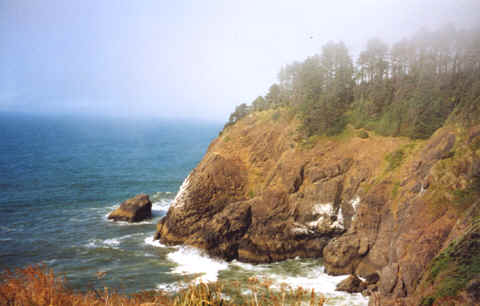 "Photo: ""Oregon Coast: Cliff""  Copyright 2003 S.G.P.  All Rights Reserved."